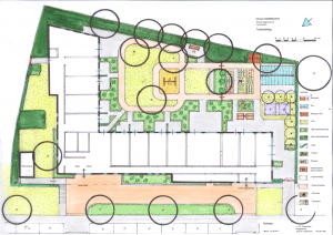 Voorlopig ontwerp tuin